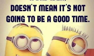 Top 28 Funny Minions Quotes and Pics 9 1