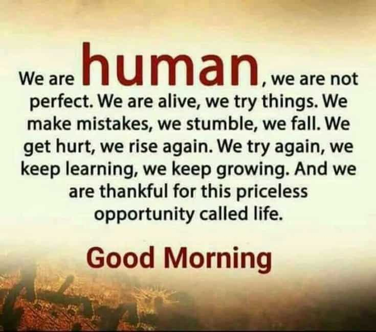 58 Good Morning Memes and Good Morning Quotes With Images 16