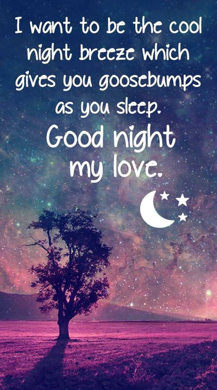 365 Good Night Quotes and Good Night Images 117