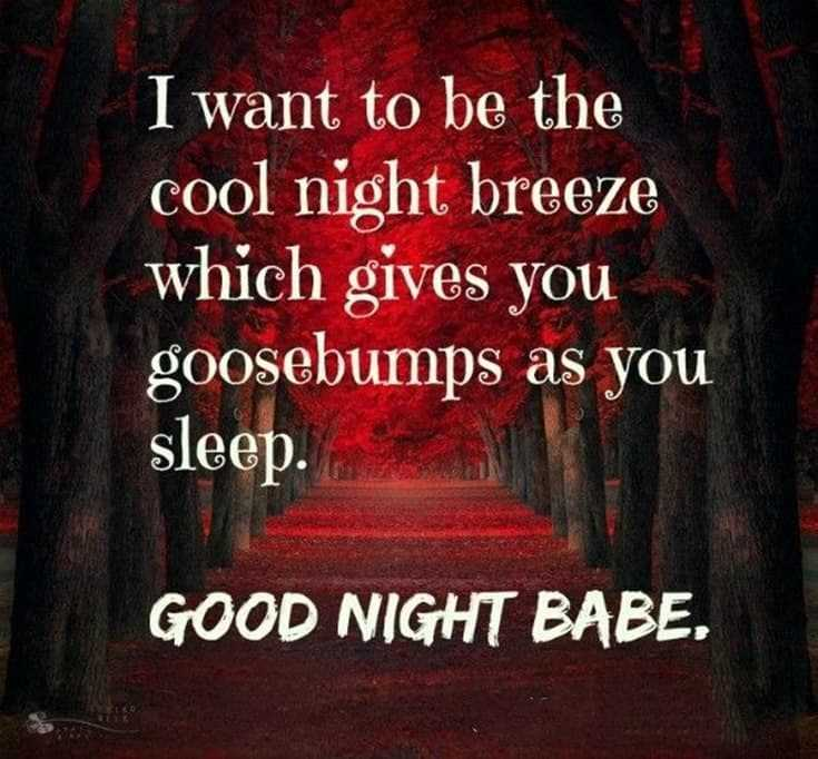 365 Good Night Quotes and Good Night Images 118