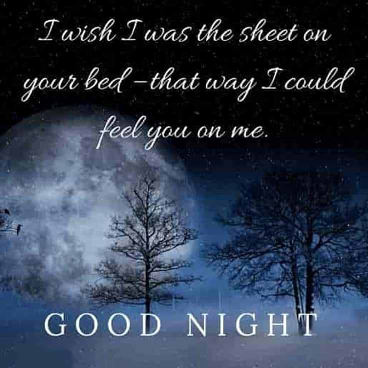 365 Good Night Quotes and Good Night Images 136