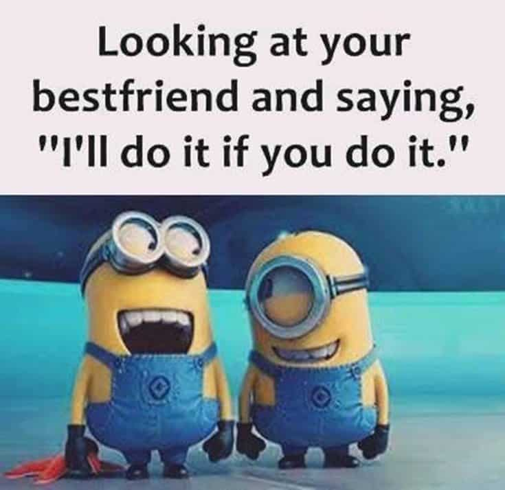 59 Funny Minions Picture Quotes Funny Memes 15