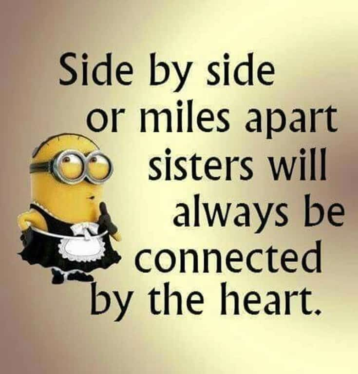 59 Funny Minions Picture Quotes Funny Memes 17