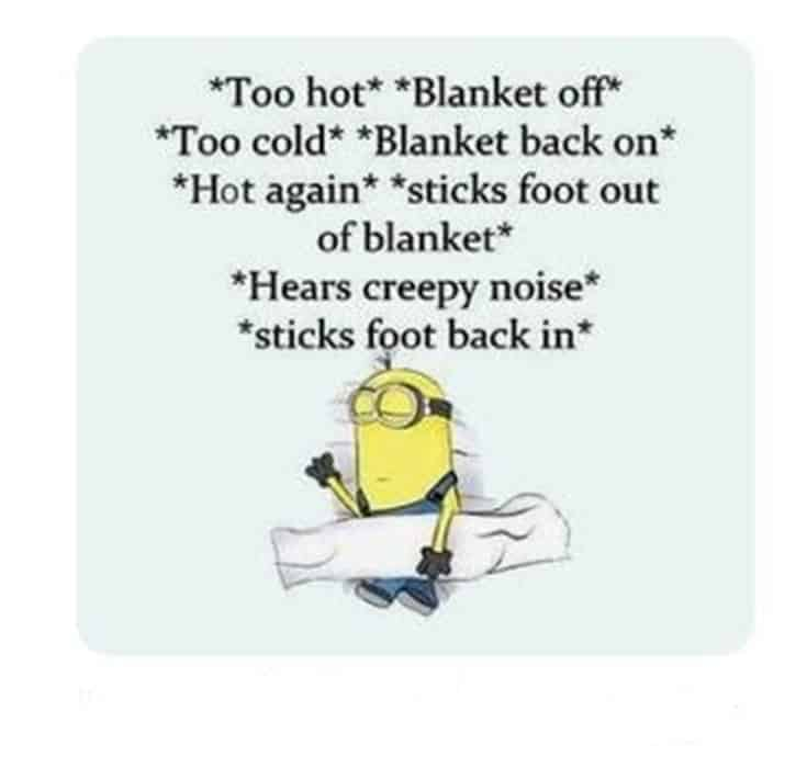 59 Funny Minions Picture Quotes Funny Memes 21