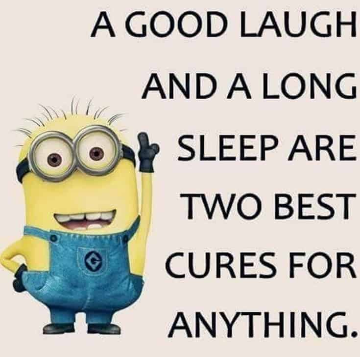 59 Funny Minions Picture Quotes Funny Memes 28