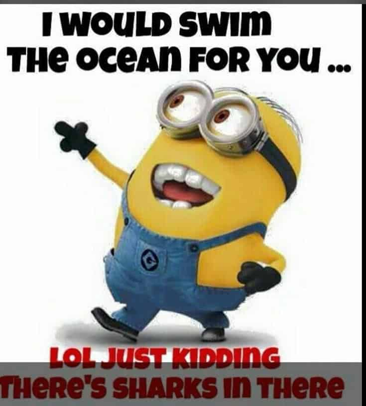 59 Funny Minions Picture Quotes Funny Memes 29