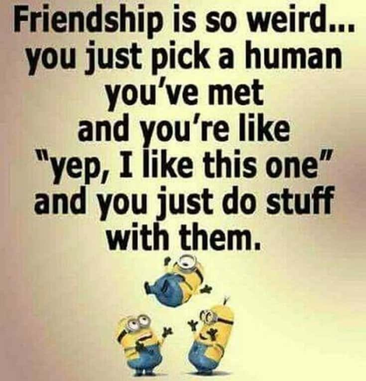 59 Funny Minions Picture Quotes Funny Memes 52