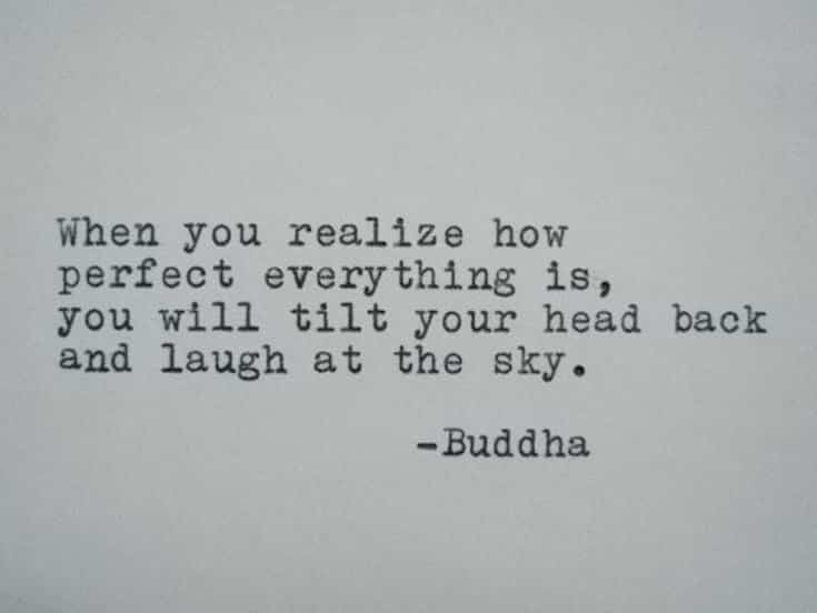 56 Buddha Quotes to Reignite Your Love 20