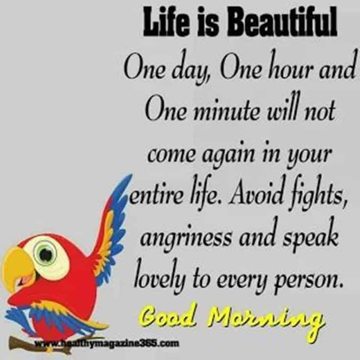 35 Inspirational Good Morning Quotes and Wishes 15