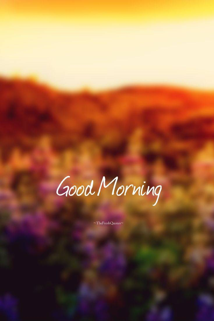 35 Inspirational Good Morning Quotes and Wishes 23
