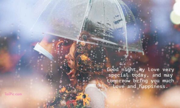 28 Amazing Good Night Quotes and Wishes with Beautiful Images