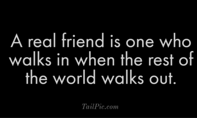 31 Good Morning Quotes For Friends To Enriched Your Life