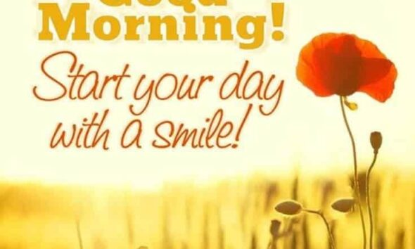 Amazing Good Morning Quotes and Wishes with Beautiful Images 7