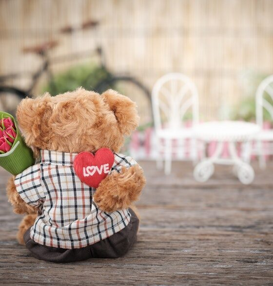 Cute Valentines Day Quotes That Celebrate Love red rose flower