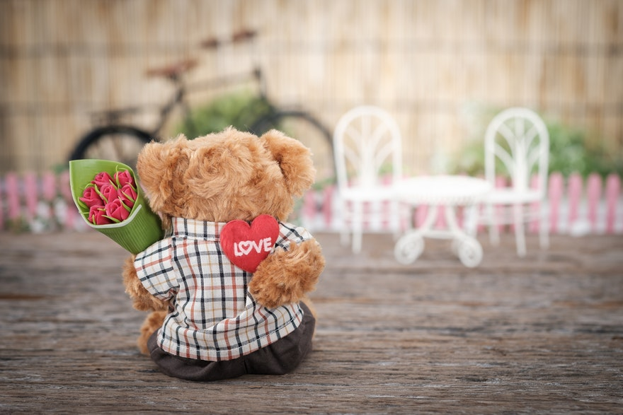 30 Cute Valentines Day Quotes That Celebrate Love red rose flower
