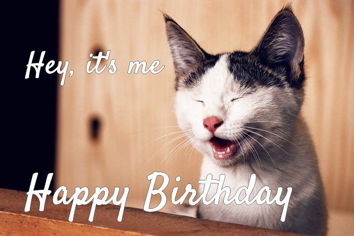 Funny Happy Birthday Memes That Will Render You Wishes 1 1