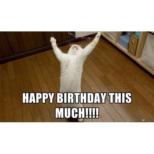Funny Happy Birthday Memes That Will Render You Wishes 12