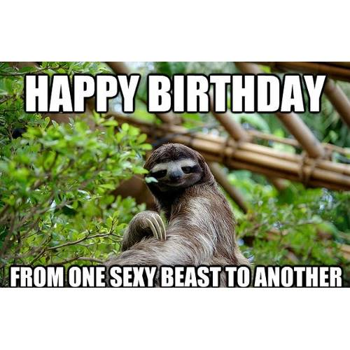Funny Happy Birthday Memes That Will Render You Wishes 17