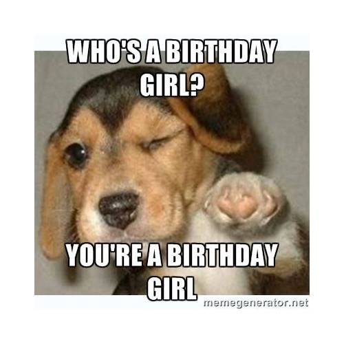 Funny Happy Birthday Memes That Will Render You Wishes 19