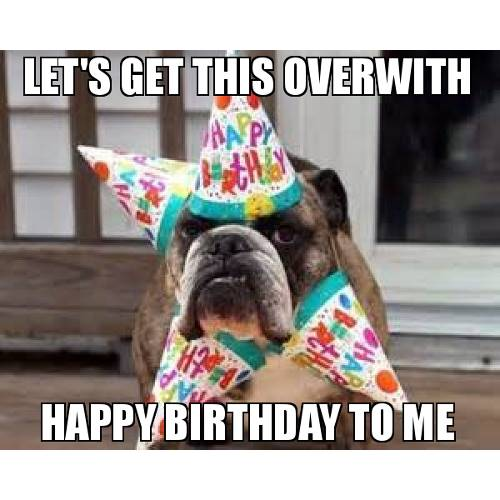Funny Happy Birthday Memes That Will Render You Wishes 32