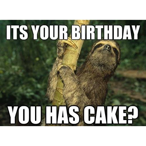 Funny Happy Birthday Memes That Will Render You Wishes 42