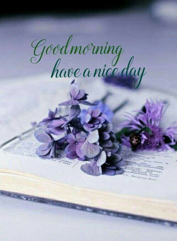best good morning greetings images Wishes messages 40