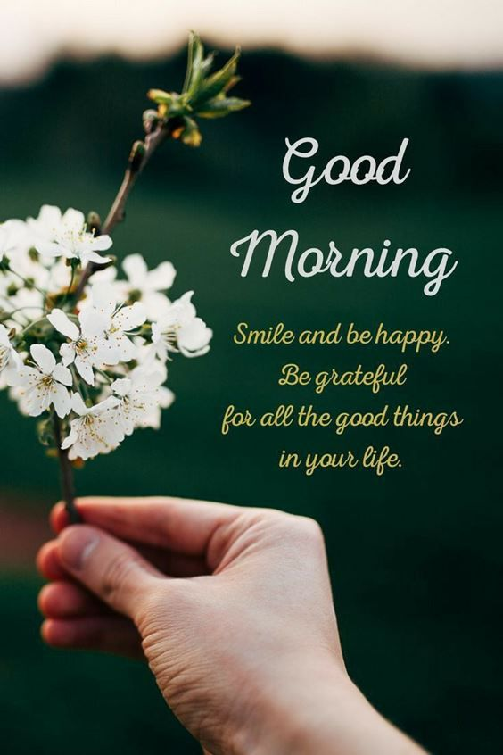 best good morning greetings images Wishes messages 42