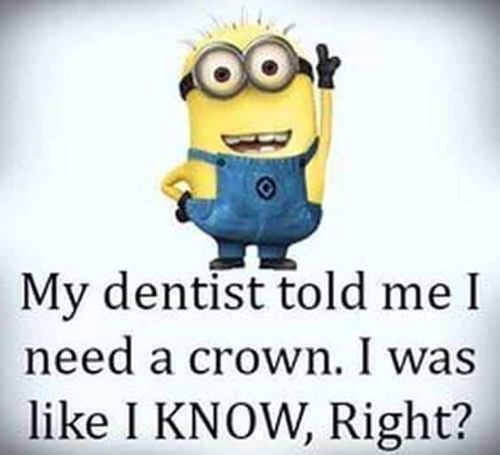 40 Funny Jokes Minions Quotes With Images Funny Text Messages 23