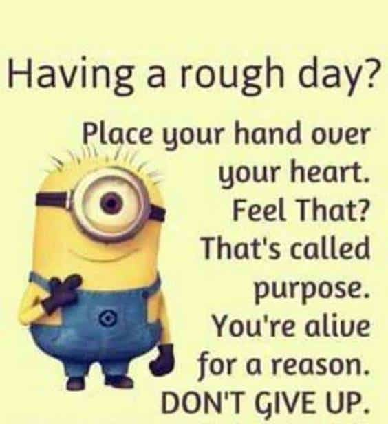 40 Funny Jokes Minions Quotes With Images Funny Text Messages sarcastic quotes about life about minions quotes and sayings