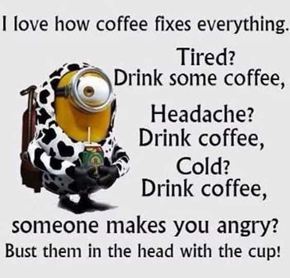 40 Funny Jokes Minions Quotes With Images Funny Text Messages 34
