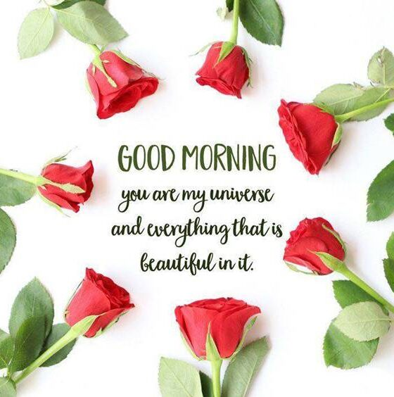 45 Good Morning My Love Quotes images Love Messages 4