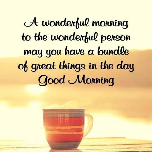 good morning it's time to rise and shine good morning have a nice day quotes