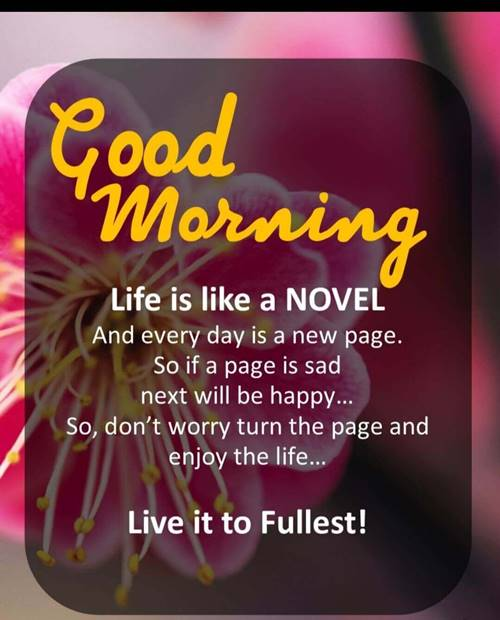 wake up beautiful quotes woke up today looked at your picture