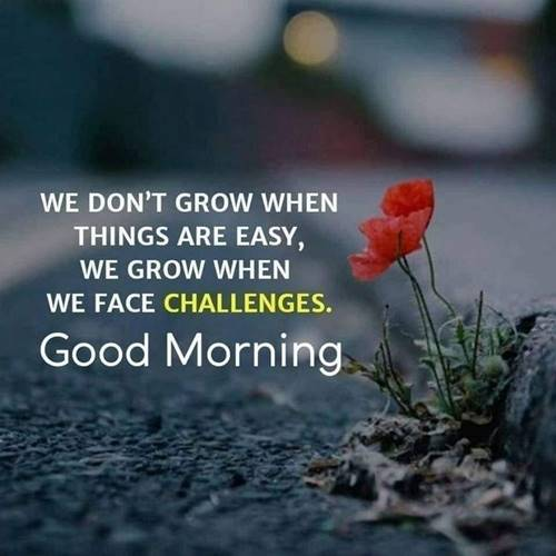 good morning wishes make it a good day inspirational saturday morning quotes
