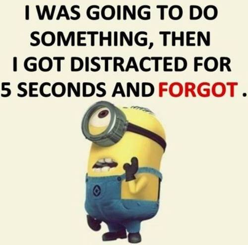 36 Best Minion Quotes Images Funny Sayings 15