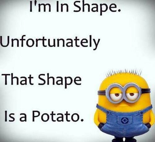 36 Best Minion Quotes Images Funny Sayings funny minion sayings minions quote