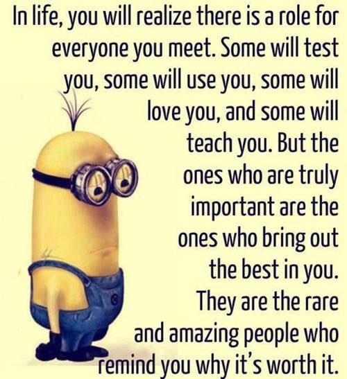 36 Best Minion Quotes Images Funny Sayings 2