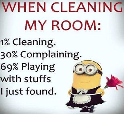 36 Best Minion Quotes Images Funny Sayings 21