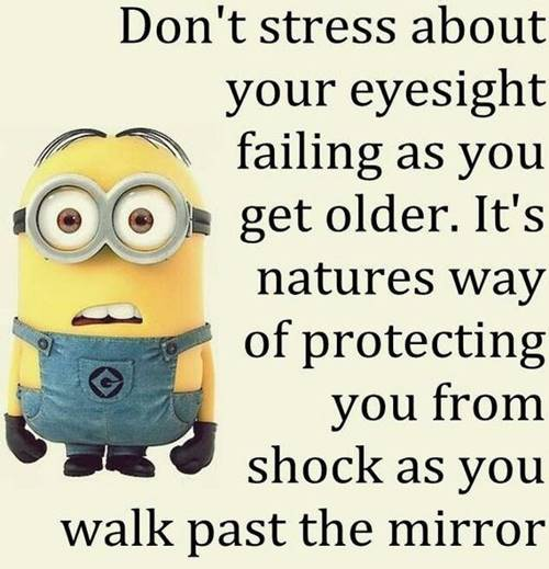 36 Best Minion Quotes Images Funny Sayings 35