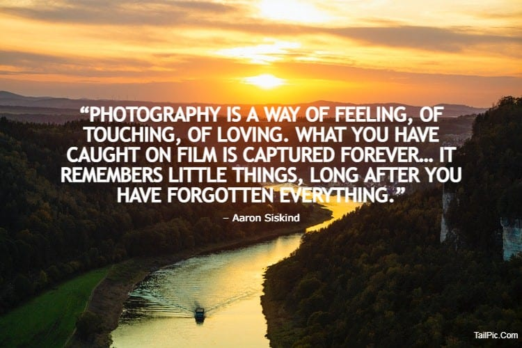 150 Famous Photography Quotes For Your Inspiration Inspirational Quotes about Photography by Famous Photo | photography quotes funny, architecture photography quotes, photography quotes