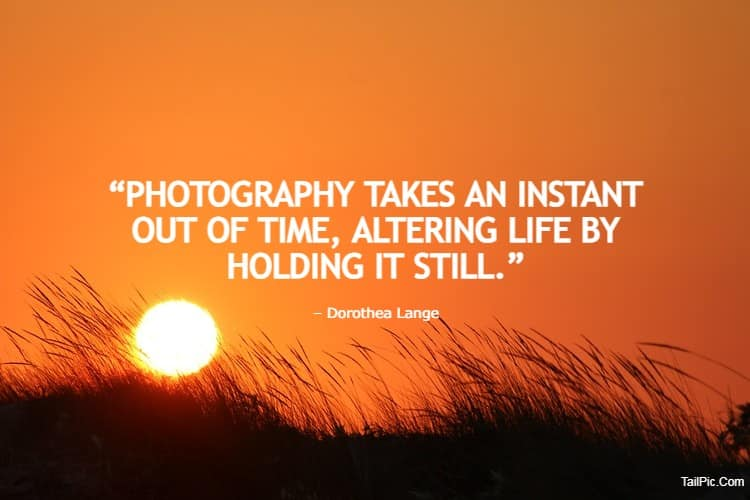 150 Famous Photography Quotes For Your Inspiration Inspirational Quotes about Photography by Famous Photogr | wedding photography quotes, portrait photography quotes, reflection photography quotes