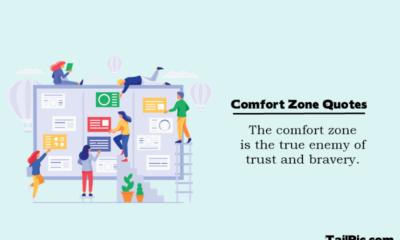 Comfort zone in life Comfort zone quotes