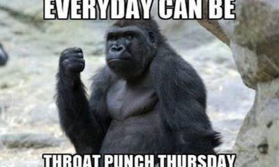 best funny thursday memes for all time