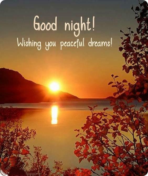 best good night messages