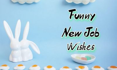 Funny New Job Wishes Messages And Pictures