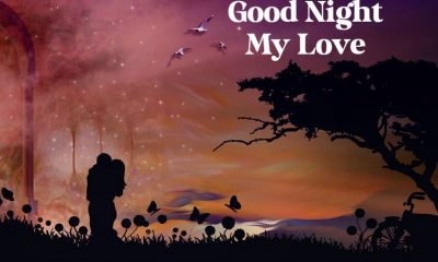 Good Night Love Quotes And Images – The Best Collection