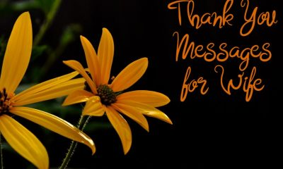 Thank You Messages for Wife And Wishes Appreciation Quotes About Be Thankful
