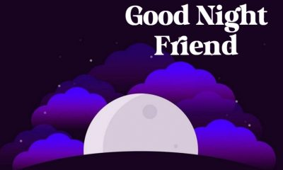 The Best Collection Good Night Quotes for Friends