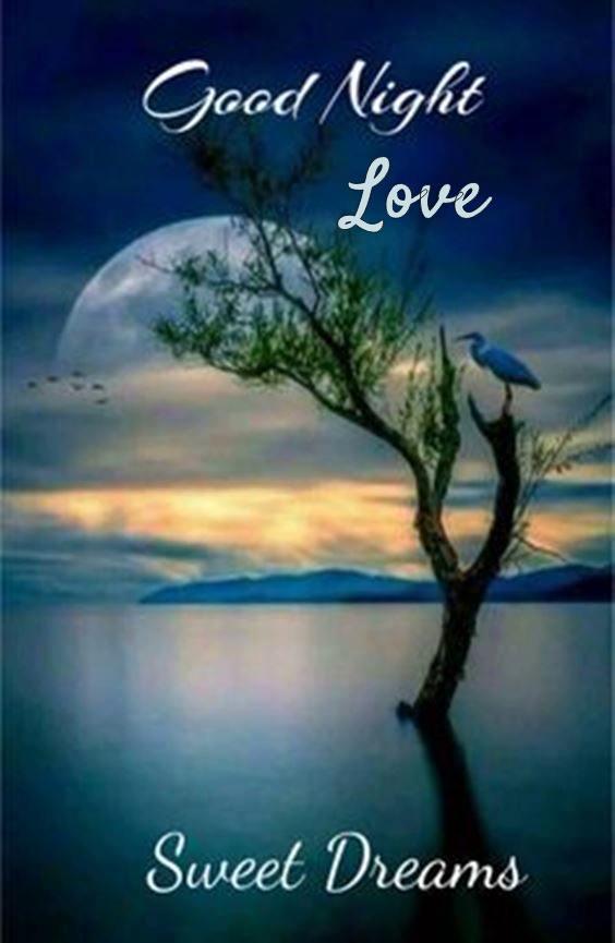 good night love message