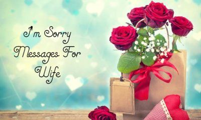 Heartfelt Im Sorry Messages For Wife – Romantic Deep